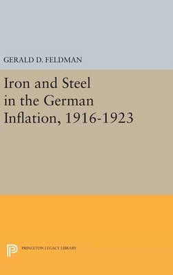 Iron and Steel in the German Inflation, 1916-1923 - Princeton Legacy Library (Hardback)