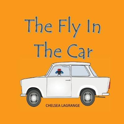 Fly in the Car (Paperback)