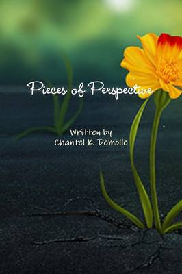 Pieces of Perspective (Paperback)