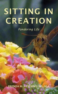 Sitting in Creation: Pondering Life (Paperback)