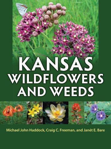 Kansas Wildflowers and Weeds (Hardback)
