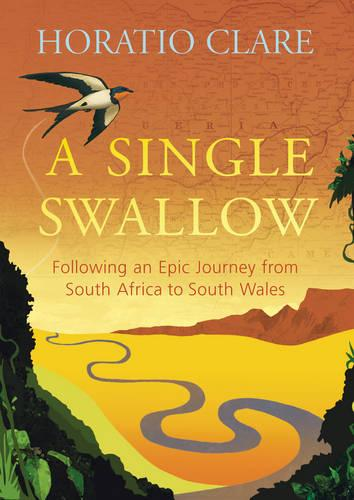 A Single Swallow: Following an Epic Journey from South Africa to South Wales (Hardback)