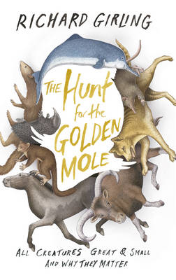 The Hunt for the Golden Mole: All Creatures Great and Small, and Why They Matter (Hardback)