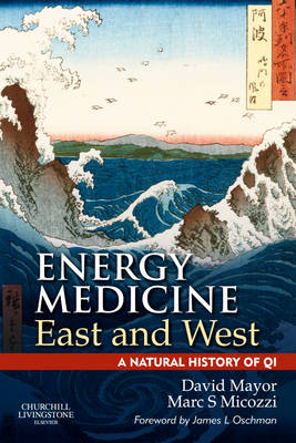 Energy Medicine East and West: A Natural History of QI (Paperback)