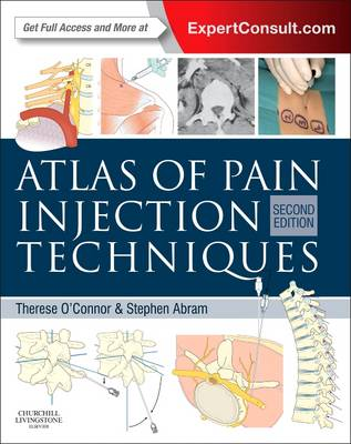 Atlas of Pain Injection Techniques: Expert Consult: Online and Print (Hardback)
