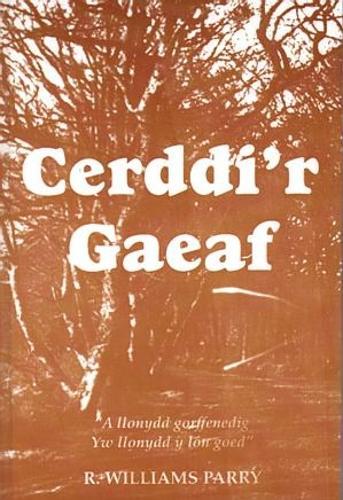 Cerddi'R (Paperback)