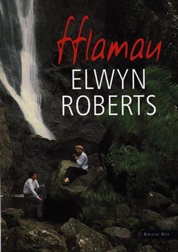 Fflamau (Paperback)