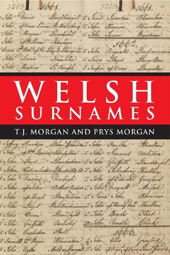 Welsh Surnames (Paperback)