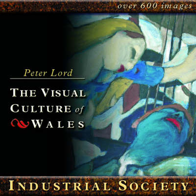 Industrial Society: The Visual Culture of Wales (CD-ROM)