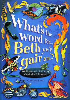 What's the Word for...?: Beth yw'r Gair am...? (Paperback)