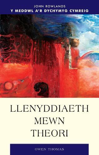 Llenyddiaeth Mewn Theori (Paperback)