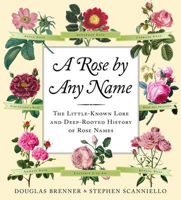 A Rose by Any Name (Hardback)