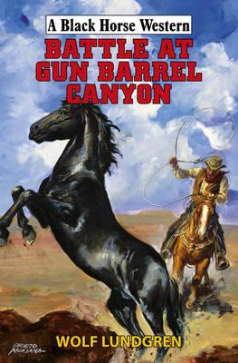 Battle at Gun Barrel Canyon (Paperback)