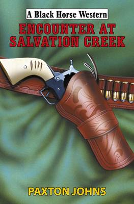 Encounter at Salvation Creek (Hardback)
