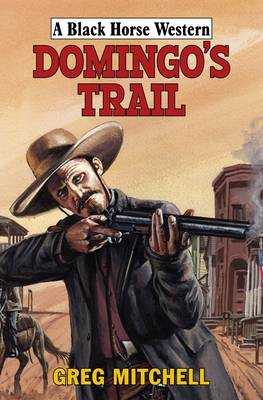 Domingo's Trail (Hardback)