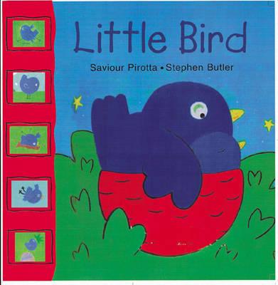 Little Bird (Paperback)