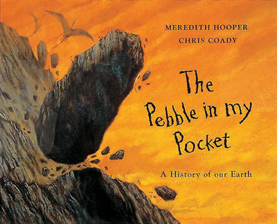 Image result for pebble in my pocket