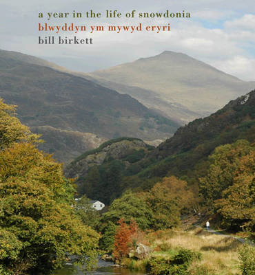 A Year in the Life of Snowdonia - Year in the Life (Hardback)