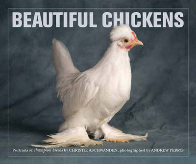 Beautiful Chickens (Paperback)