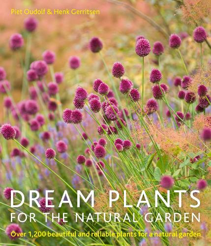 Dream Plants for the Natural Garden (Paperback)