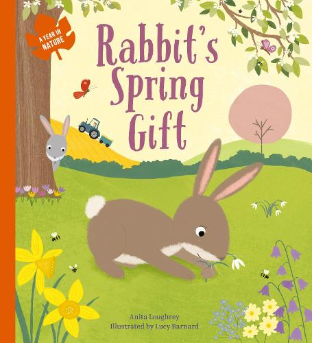 Rabbit's Spring Gift - A Year In Nature (Paperback)