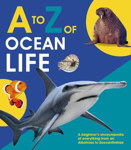 A to Z of Ocean Life - A-Z (Hardback)