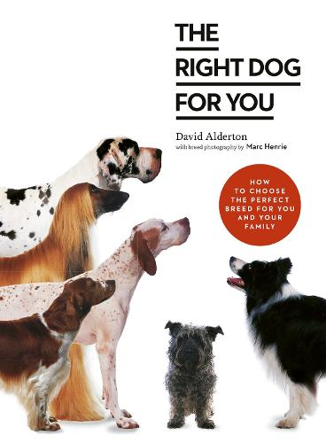 Your Dog Selector: The complete guide to picking the perfect breed (Paperback)