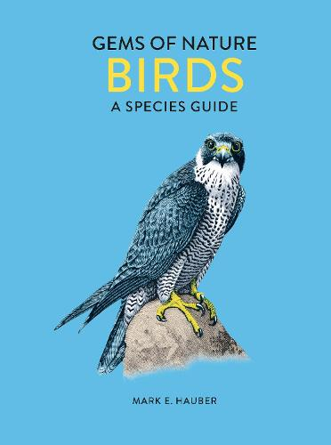 The Little Book of Birds: Gems of Nature - The Little Book of (Hardback)