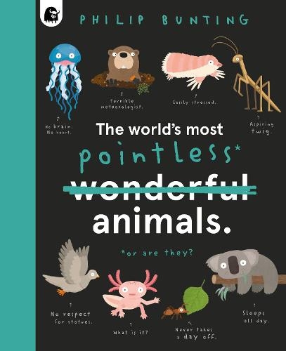 The World's Most Pointless Animals: Or are they? (Hardback)