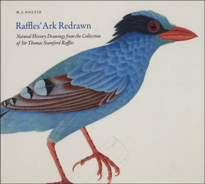 Raffles' Ark Redrawn: Natural History Drawings from the Collection of Sir Thomas Stamford Raffles (Paperback)