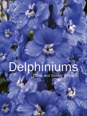 Delphiniums (Hardback)