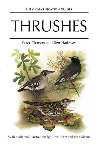 Thrushes - Helm Identification Guides (Hardback)