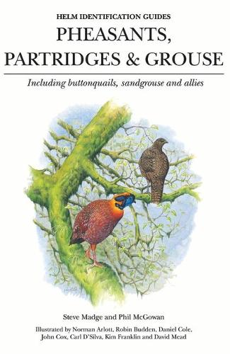 Pheasants, Partridges & Grouse: Including Buttonquails, Sandgrouse and Allies - Helm Identification Guides (Hardback)