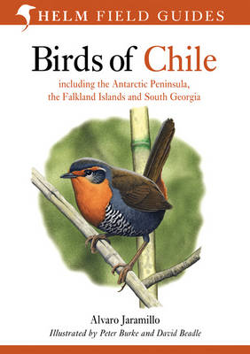 Birds of Chile: Including the Antartic Peninsular, the Falkland Islands and South Georgia - Helm Field Guides (Paperback)