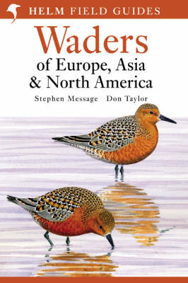Waders of Europe, Asia and North America - Helm Field Guides (Paperback)