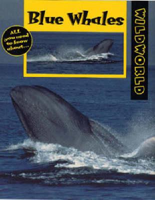 Blue Whales - Wild World (Paperback)