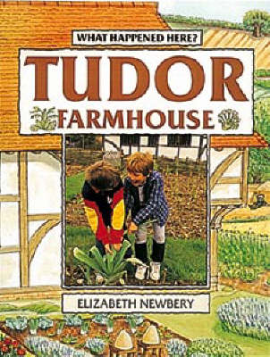 Tudor Farmhouse - What Happened Here (Paperback)