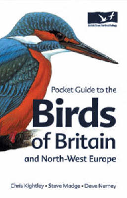 Pocket Guide to the Birds of Britain and North-West Europe - Helm Field Guides (Paperback)