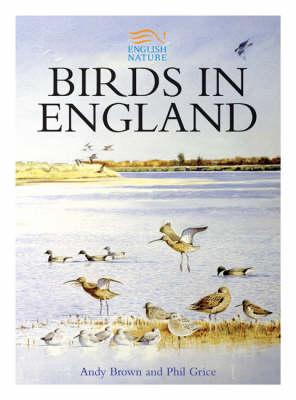 Birds in England (Hardback)