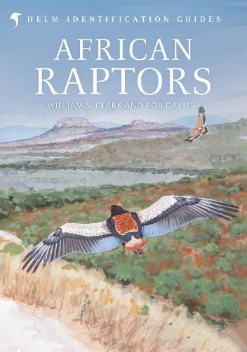African Raptors - Helm Identification Guides (Hardback)