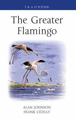 The Greater Flamingo - Poyser Monographs (Hardback)