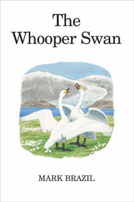 The Whooper Swan - Poyser Monographs (Hardback)