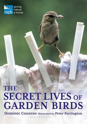The Secret Lives of Garden Birds - RSPB (Paperback)