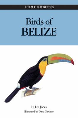 Birds of Belize - Helm Field Guides (Paperback)