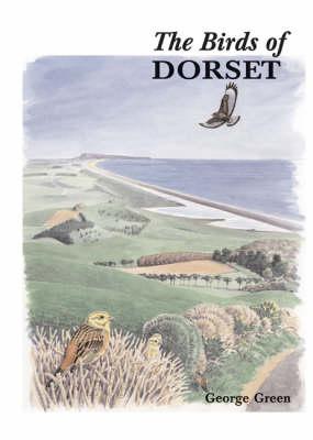 The Birds of Dorset - Helm County Avifauna (Hardback)