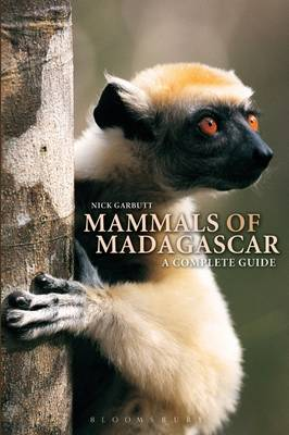 Guide to the Mammals of Madagascar (Paperback)