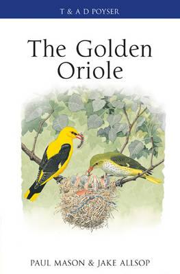 The Golden Oriole - Poyser Monographs (Hardback)