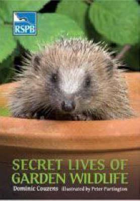 Secret Lives of Garden Wildlife - RSPB (Paperback)