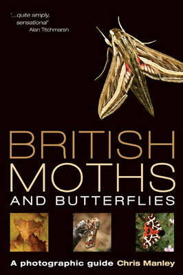 British Moths and Butterflies: A Photographic Guide (Paperback)