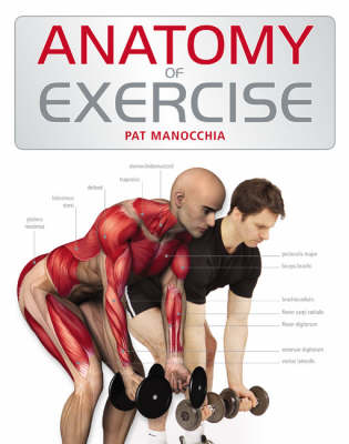 Anatomy of Exercise (Paperback)
